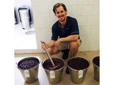 2015 wine vintage research underway at DAFWA