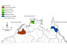 A year-round wet season?