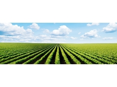 Agriculture leaves diverse footprints across nation