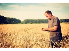 Farmers face falling crop yields and growing food demand. Shutterstock