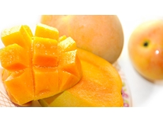 Aussie Honey Gold mangoes win favour in US