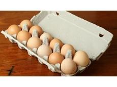 Australia experiencing an egg shortage