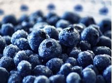Australian berry industry gets funding boost