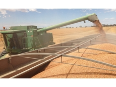 Australian lentil crop doubles previous record