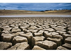 Beating drought with agricultural insurance