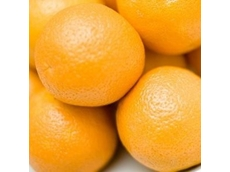 Demand for Aussie oranges soars in the United States