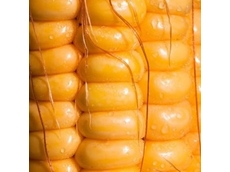 FSANZ considers allowing food from a GM corn line