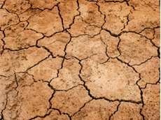 Funds for drought increased