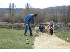 Generational knowledge-sharing critical in agribusiness