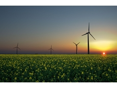 India's energy future: Australian coal or renewable revolution?