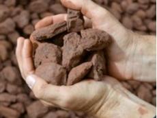 Iron ore prices break past $US100