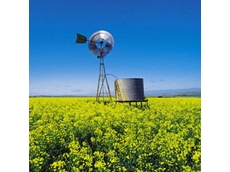 Monsanto seeks approval for new GM canola crop