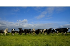 Morrison ticks off sale of Australia's biggest dairy to Chinese Buyer