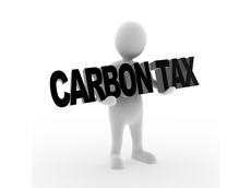 New Senate should let carbon tax go: Teys