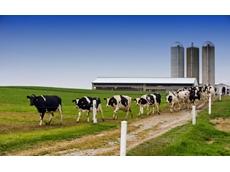 New South Australia milk plant