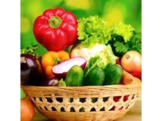 Significant difference between organic and conventional food