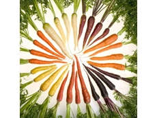 Spade & Barrow achieves sustainable business model through imperfect produce