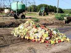 Turning agricultural waste into new industries