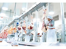 Union obstruction endangers Australian manufacturing: Teys CEO