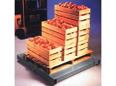 ELP pallet platform scales from A&D