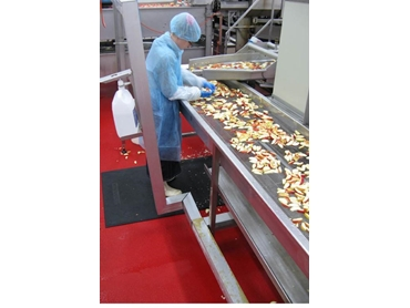 Matting for the food industry