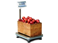 Accuweigh industrial platform scales