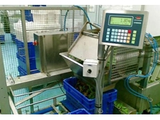 IT8000 batch weighers are fully programmable and easily able to perform a range of weighing, logic and control operations