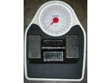 Salter 7145 mechanical dial scale