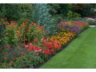 improve the health of your garden with pelletized and powdered gypsum - Garden Gypsum