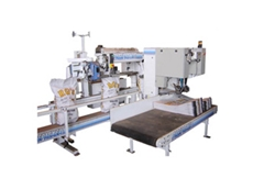 Pacepacker Automatic Bagging System