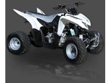 COBRA 350 ATV