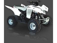 Cobra HI-PERF 100 ATV