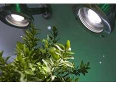 Marl white LED luminaires