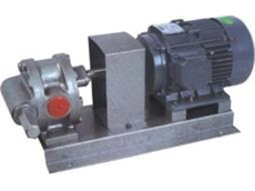 Foot type CI gear pump