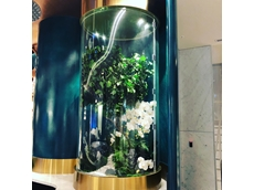 Custom acrylic terrariums fabricated for Sydney's Star Casino