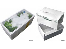 The ChilliFresh Pack was developed as a sustainable alternative to expanded Polystyrene (EPS) foam packs