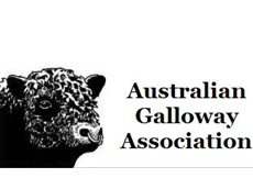 Australian Galloway Association