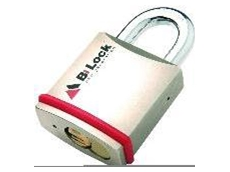 Alcom series mortice locks