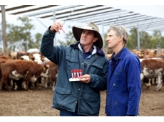 ALFA represents and promotes the interests of the feedlot industry