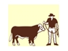 Australian Miniature Hereford Cattle Association