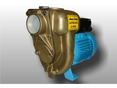 Bronze and Stainless Steel pumps for corrosive liquid transfer