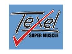 Australian Texel Stud Breeders Association Inc