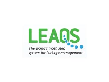Comprehensive survey and leakage management program