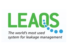 Comprehensive survey and leakage management program