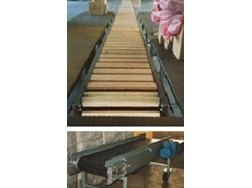 Chain and Roller Conveyors for heavy duty applications