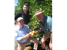 Chris Staff and Mark Goldsack of Bayer CropScience join citrus grower Bruce Dickie who uses Movento insecticides