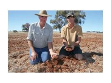"Charlie and Andrew Watts of ""Pinevale"". Manildra, NSW."