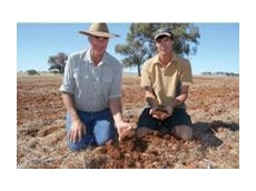 Charlie and Andrew Watts of Pinevale, Manildra, NSW