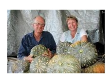 Neil and Gina Wiseman with organic pumpkins grown on their irrigated farm at Coleambally, NSW.