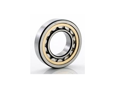 Single and Double row Full Complement Cylidrical Roller Bearings